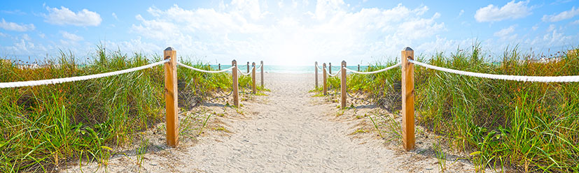 beachAccess_banner